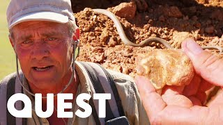 Venomous Snake Stands Between The Victoria Diggers' $80K Gold Fortune | Aussie Gold Hunters