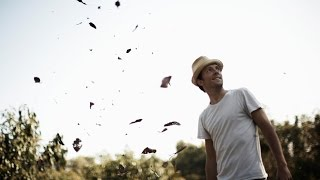 Can You Hear The Birds Singing? by Jason Mraz