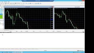 ИСКУССТВЕННЫЙ ИНТЕЛЛЕКТ ''Гамильтон'' программное обеспечение для торговли на рынке Форекс