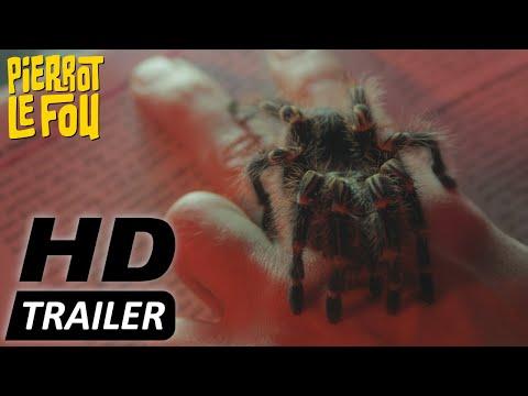 THE EDITOR Deutscher Trailer