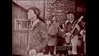 The Outsiders - Time Won't Let Me - 1966 rare clip