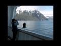 Wild Child in Alaska