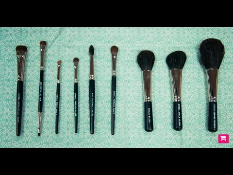 Brochas básicas a usar para cualquier maquillaje.