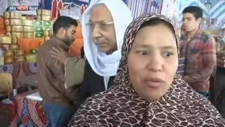 مصر.. استعدادات للاحتفال بالمولد النبوي