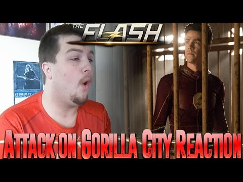 The Flash Season 3 Episode 13: Attack on Gorilla City Reaction
