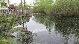Озеро в Ореховке  очистили, но «осадок» остался, обвиняемый в сбросе канализационных вод – в суде