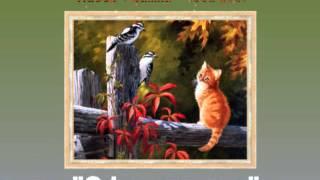 Выбор рамки для картины по номерам(Данное видео поможет выбрать рамку для Картины по номерам