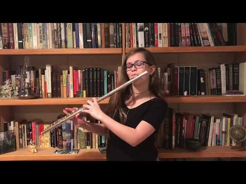 Dzeko & Torres ft. Delaney Jane - L'Amour Toujours (Tiësto Edit) - With a Flute