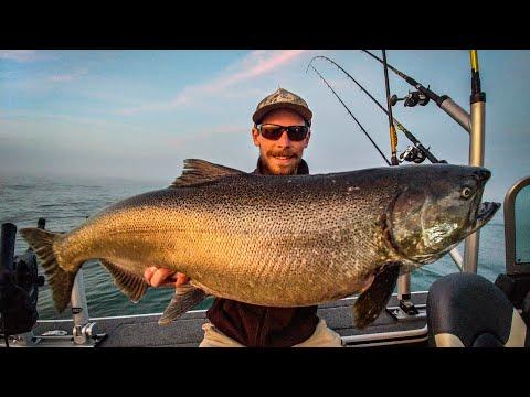 Locked - Salmon Fishing - Lake Michigan - Fall Run