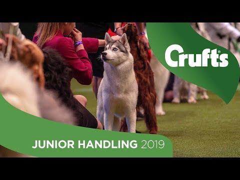 International Junior Handling Competition - Round 1 Part 1 | Crufts 2019