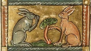 Medieval Rabbit Recipe