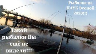 Рыбалка на ПАУК ПОДЪЁМНИК Такой рыбалки с ЛОДКИ на паук вы еще не видели Ловля щуки ВЕСНОЙ
