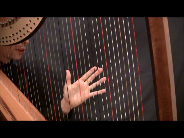 Harp Tuesday, Ep. 24 - Open Octaves and muffling (part 1)