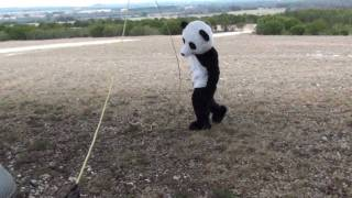 Dude Perfect Panda | Episode 3
