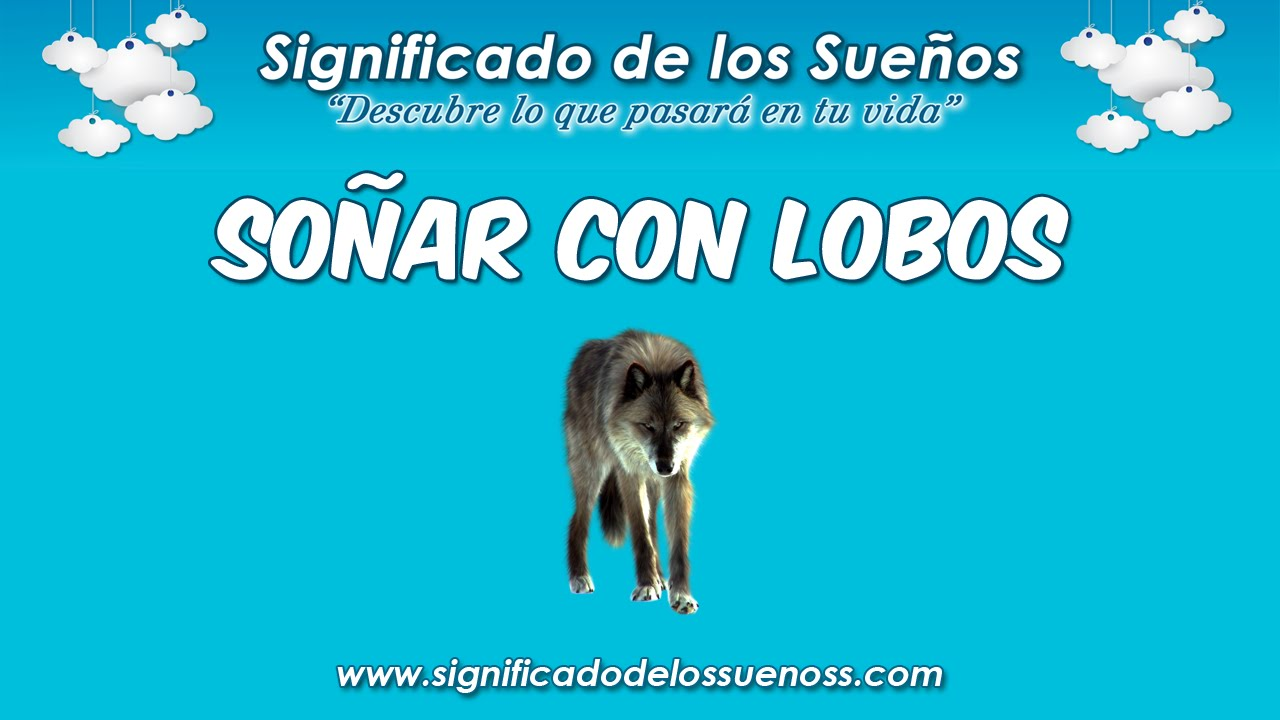 Soñar Con Lobos Qué Significa Soñar Con Lobos Youtube