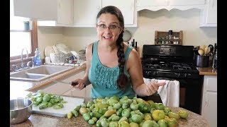 Don't FRY those GREEN TOMATOES!!