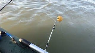 Рыбалка на спиннинг с лодки. Клев как на Ахтубе. Дон 2019 октябрь.
