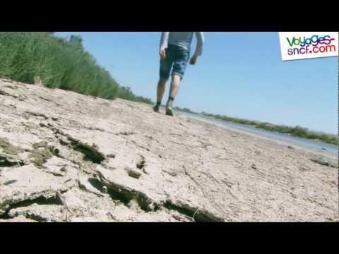 Vidéo Arles et la Camargue