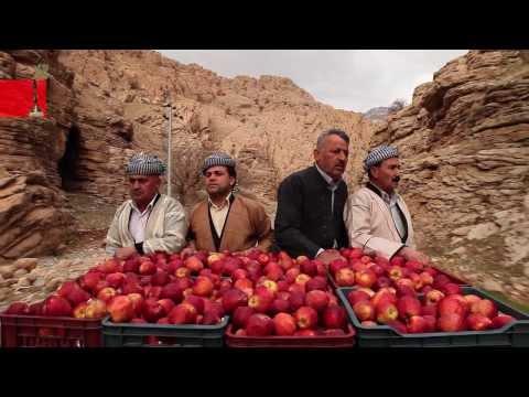 World Cinema - Documentary Film Competition 2013