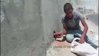 فيديو يرصد رحلة تهريب «كعك القدس» من القدس للضفة الغريبة عبر فتحات «الجدار العازل»