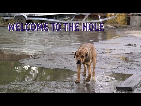 Welcome To The Hole, John Gottis Body-Dumping Ground