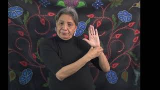 The Canadian Indigenous Cognitive Assessment: Sign Language