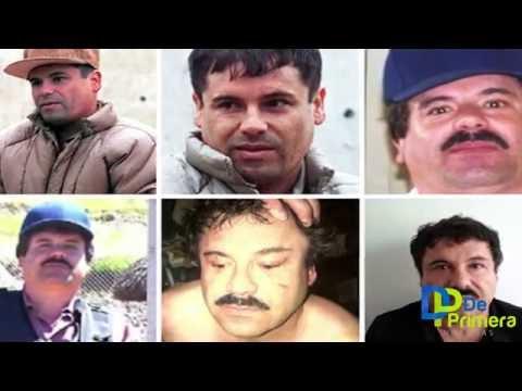 LA GUERRA CONTRA EL CHAPO: REALIDAD Y MITO