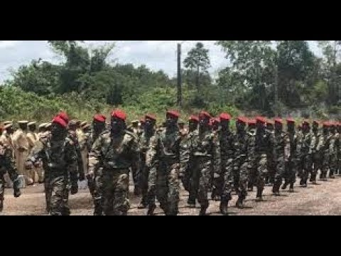 Central African Republic Sends 1,300 Soldiers to Russia for Military Training