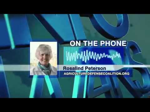 Geoengineering  Destroying The Atmosphere with Rosalind Peterson
