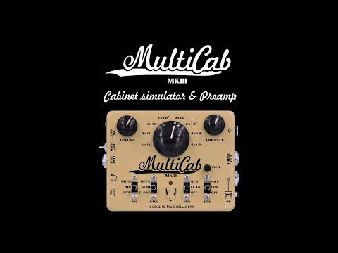 Tsakalis AudioWorks - MultiICab MKIII - NAMM 2020