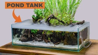 Building an indoor pond aquari…