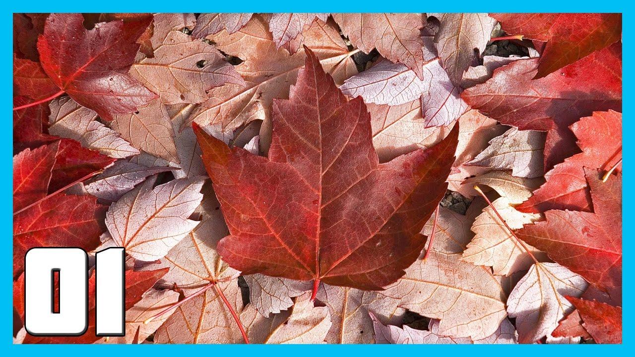 HOI4 Kaiserreich Canada Gameplay Ep 1 - Oh Canada || HOI4