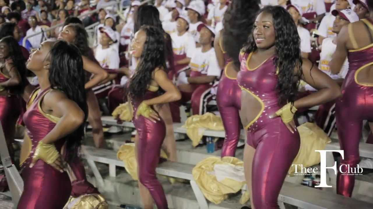2013 florida state vs florida football upskirt 2