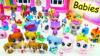 видео LITTLEST PET SHOP