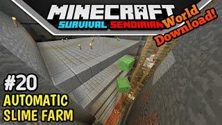 Membuat SLIME FARM OTOMATIS! - MCPE Survival Sendirian #20