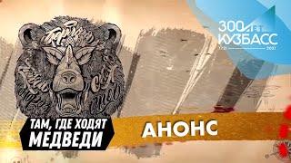 Тревел шоу Там где ходят медведи Анонс