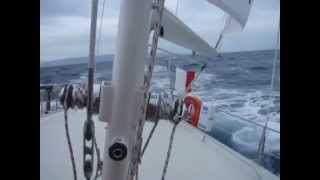 Supermaramu cool sailing