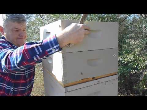 Part 3 - December Check on Stacked Hives