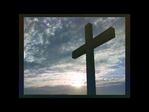 Trinity Reformed Church Service 04-05-2020