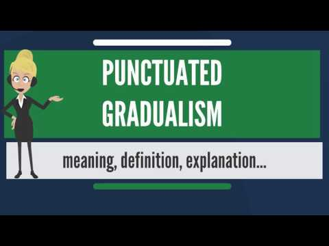 What is PUNCTUATED GRADUALISM? What does PUNCTUATED GRADUALISM mean?