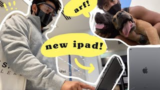 Got the new iPad + weekend with the dogs! (raw vlog)