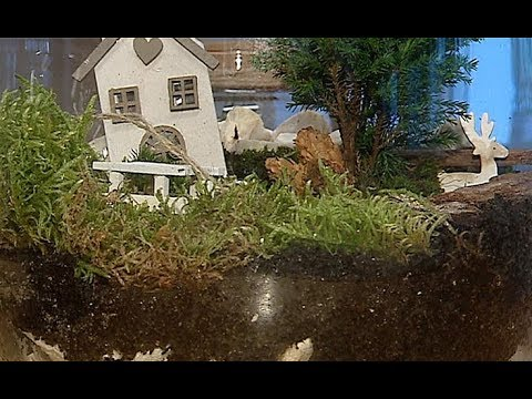 Miniaturowe ogrody w szkle – terapia i nauka pracy