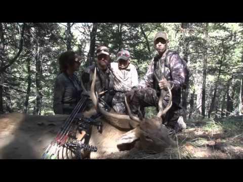 Download Bowhunt or Die - Season 2: Episode 10 - Wyoming Elk Hunting