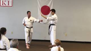 Guy Brodeur 7th Dan - Delivering Body Mass to Technique