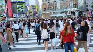 渋谷スクランブル交差点を歩く。(Walking at the scrambled intersection in Shibuya)