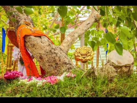 Jaya Sirima Hamuduruwane - Deepika Priyadarshani