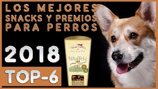 Los mejores 🔥 Snacks y Premios para Perros 🐶 TOP-6 🔥