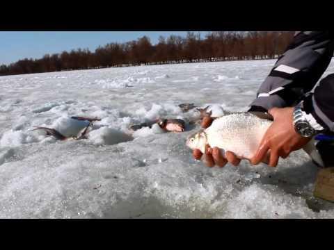Рыбалка зимняя -