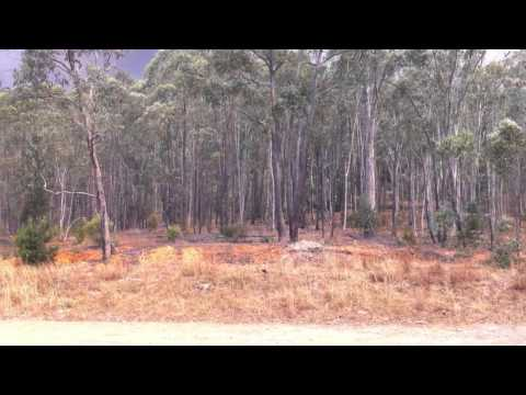 Lake Albert Rural Fire Brigade - Minnimbah Jan 2014