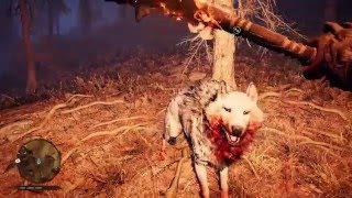 Far Cry Primal 4 Different Wolves Vs Tall Elk